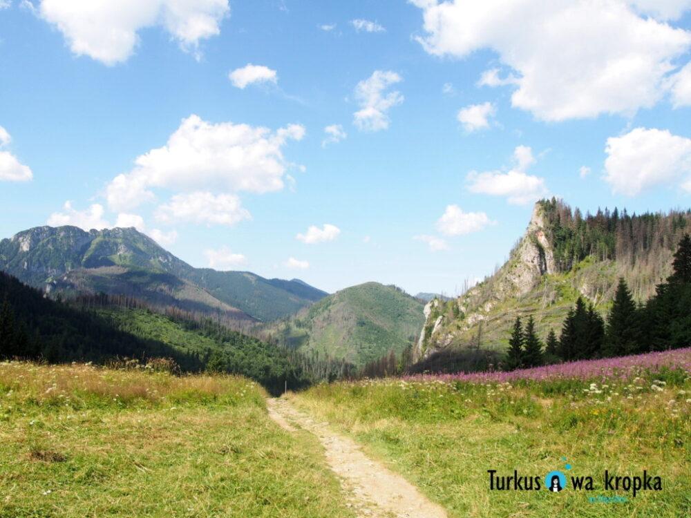 Dolina Małej Łąki z małym dzieckiem #MaluchyNaSzlaku